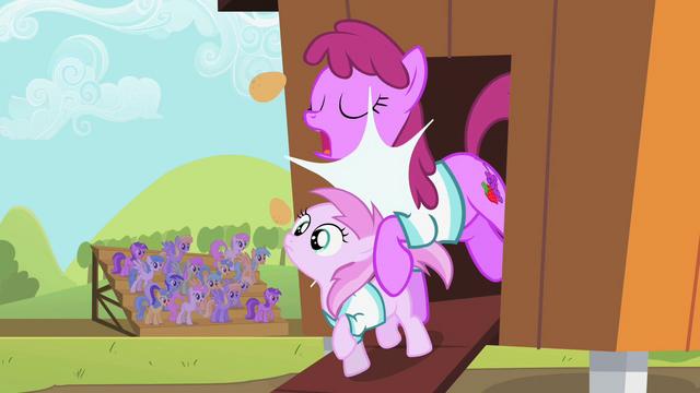 File:Berryshine bumping into Piña Colada S02E05.png