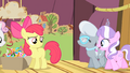 Diamond Tiara and Silver Spoon walking on the stage S4E05.png