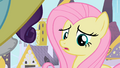 Fluttershy looking at Rarity S2E9.png