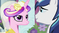 Princess Cadance with Shining Armor S2E26