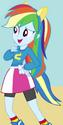 Rainbow Dash Wondercolt ID EG