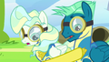 Spitfire awards Sky and Vapor with Wonderbolt pins S6E24.png