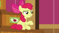 "Apple Bloom ""now that I'm gettin' older"" S6E23.png"