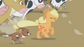 Applejack and winona S01E04.png