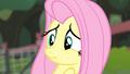 Fluttershy scrunchy face S4E14.png