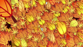 Leaves falling transition S05E05.png