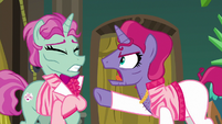 Trainer pony 2 snapping at trainer pony 1 S6E20