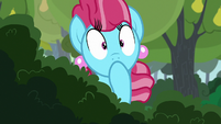 Chiffon Swirl looking shocked S7E13