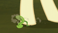 Hooffield mare steps on a plant sprout S5E23.png