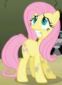Fluttershy Earth pony ID S2E01
