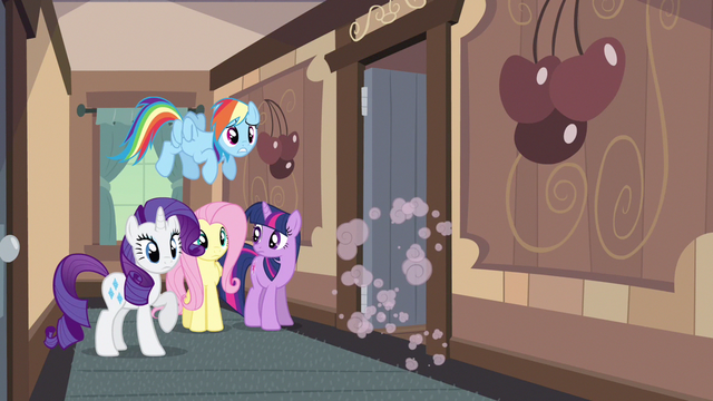 File:Rarity & Rainbow Dash dannnnnng S2E14.png