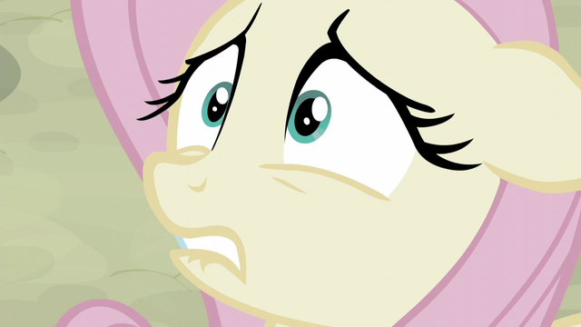 File:Fluttershy very nervous S5E02.png