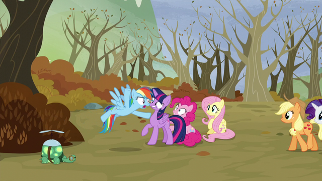 """File:Rainbow """"Who said anything about anger?!"""" S5E5.png"""
