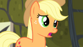 Applejack apologizing to Fluttershy S4E07.png