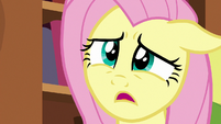 """Fluttershy """"would you mind helping me tidy up?"""" S7E12"""