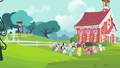 Foals gathering around CMC S4E15.png