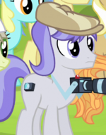 Snappy Scoop stallion ID S4E20