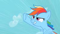 Rainbow Dash confident S2E8