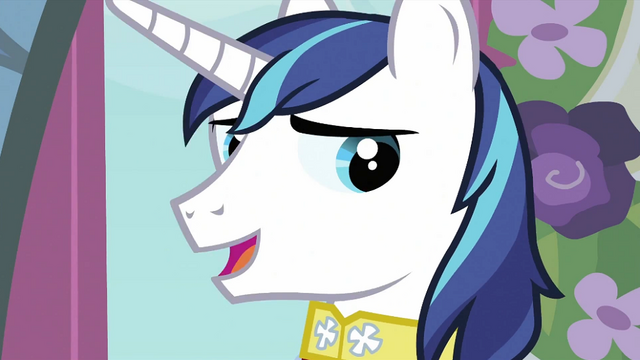 File:Shining Armor talking S2E26.png