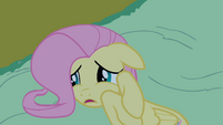 Fluttershy frightened on the ground S2E04