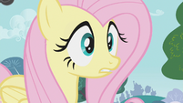 Fluttershy surprised by what the ponies say S1E07