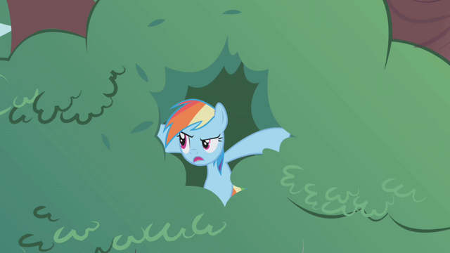 File:Rainbow Dash safe in the tree S1E05.png