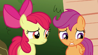 "Scootaloo ""I know what it's like to want something"" S6E19"