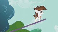 Pipsqueak on a seesaw looking determined S5E18