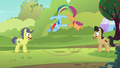 Rainbow and Scootaloo synchronized jump-roping S5E17.png