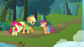 Applejack informing Scootaloo that Rainbow Dash will be meeting them S3E06.png