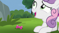 "Sweetie Belle ""that might be your problem"" S7E6"