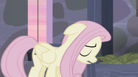 "Fluttershy ""They probably would believe me"" S5E02"