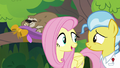 "Fluttershy ""we'll know that it was worth"" S7E5.png"