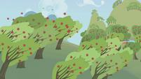 Rainbow Dash speeding through orchard S1E05