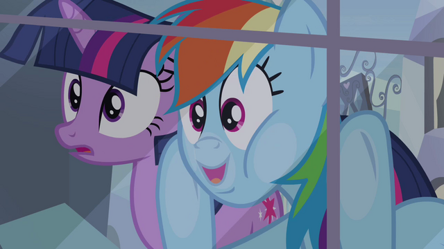 File:Twilight and Rainbow Dash looking through the window S03E12.png