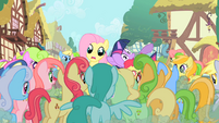 Fluttershy being mobbed S1E20