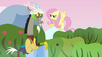 Fluttershy scolds Discord S03E10