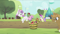 Sweetie Belle bouncing the apple into the tub S2E05