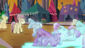 Crystal Ponies bowing their heads S3E02.png