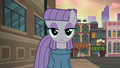 Maud Pie staring at Pouch Pony S6E3.png