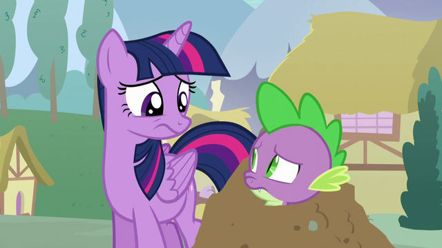 File:Twilight and Spike look at each other confused S5E22.png