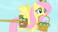 Fluttershy carrying frogs S1E15