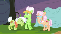 Granny Smith and Apple Rose laughing S3E8