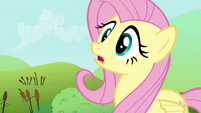 Fluttershy remembering her training S2E19