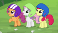 Cutie Mark Crusaders impressed by Chipcutter's work S7E6.png