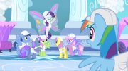 Rarity gaining a lot of attention S1E16.png