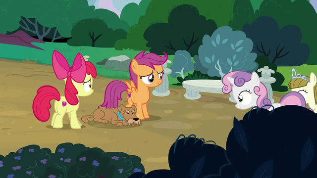 File:Sweetie and Zipporwhill return to Apple Bloom and Scootaloo S7E6.png