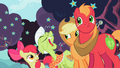 Apple family lazy daisies S2E12.png