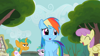 Rainbow Dash with this crowd S2E8