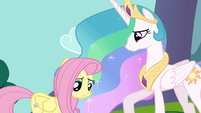 Princess Celestia with unsure Fluttershy S03E10